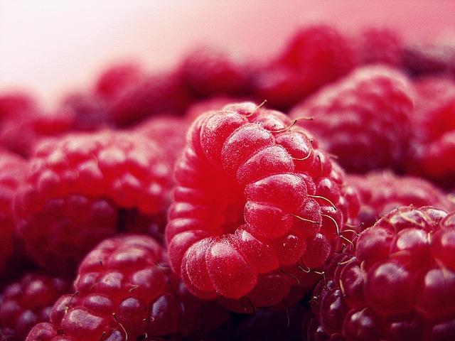 raspberry-427390_640